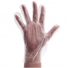 Disposable Gloves (PE)